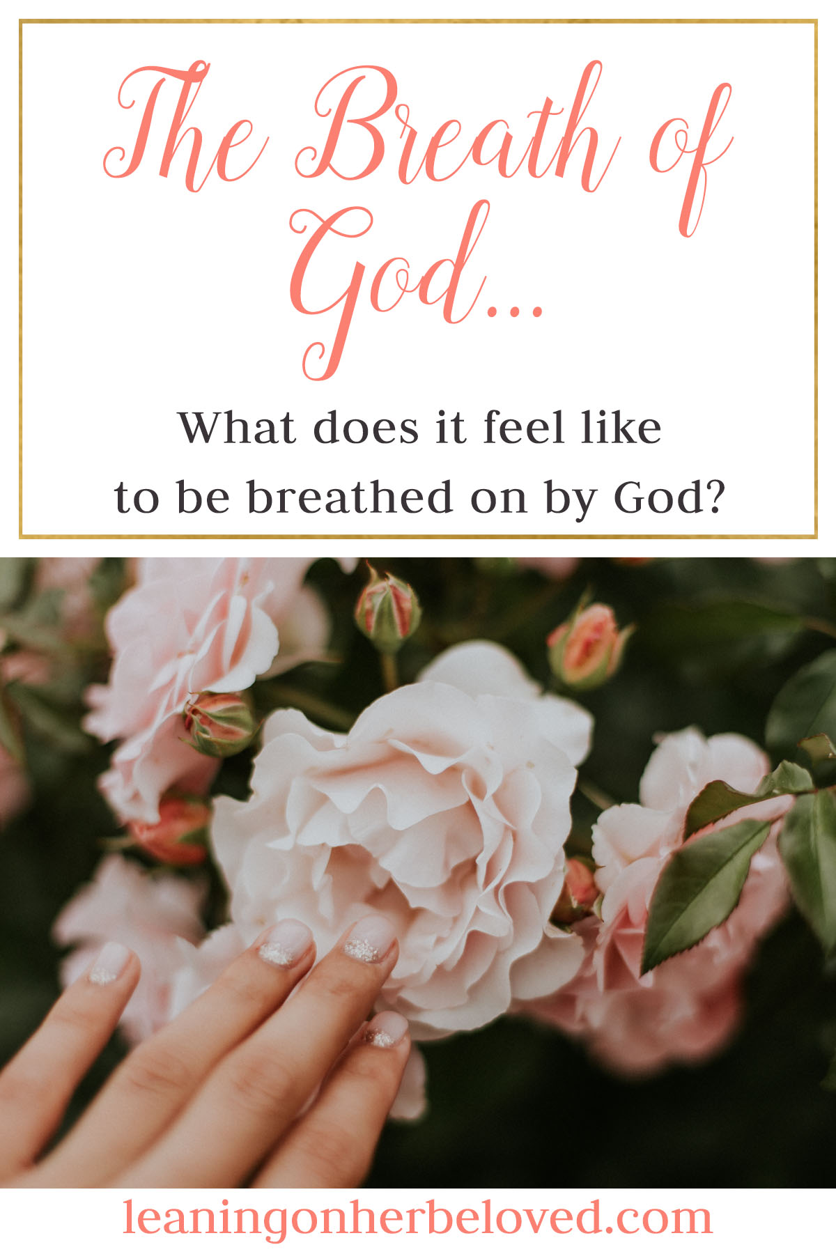 Feeling the breath of God is an experience we believers long for, but what does it really mean to feel His breath? What is it like to sit in the presence of God? | devotional | bible study | #devotional | Breath of God